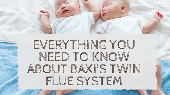 Everything_You_Need_to_Know_About_Baxis_Twin_Flue_System.jpg